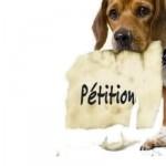 Une pétition pour supprimer la Gendarmerie !