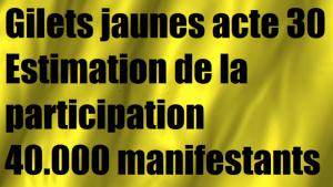 gilets-jaunes-acte-30-participation