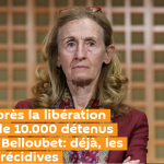 Un mois après la libération anticipée de 10.000 détenus par Nicole Belloubet: déjà, les premières récidives